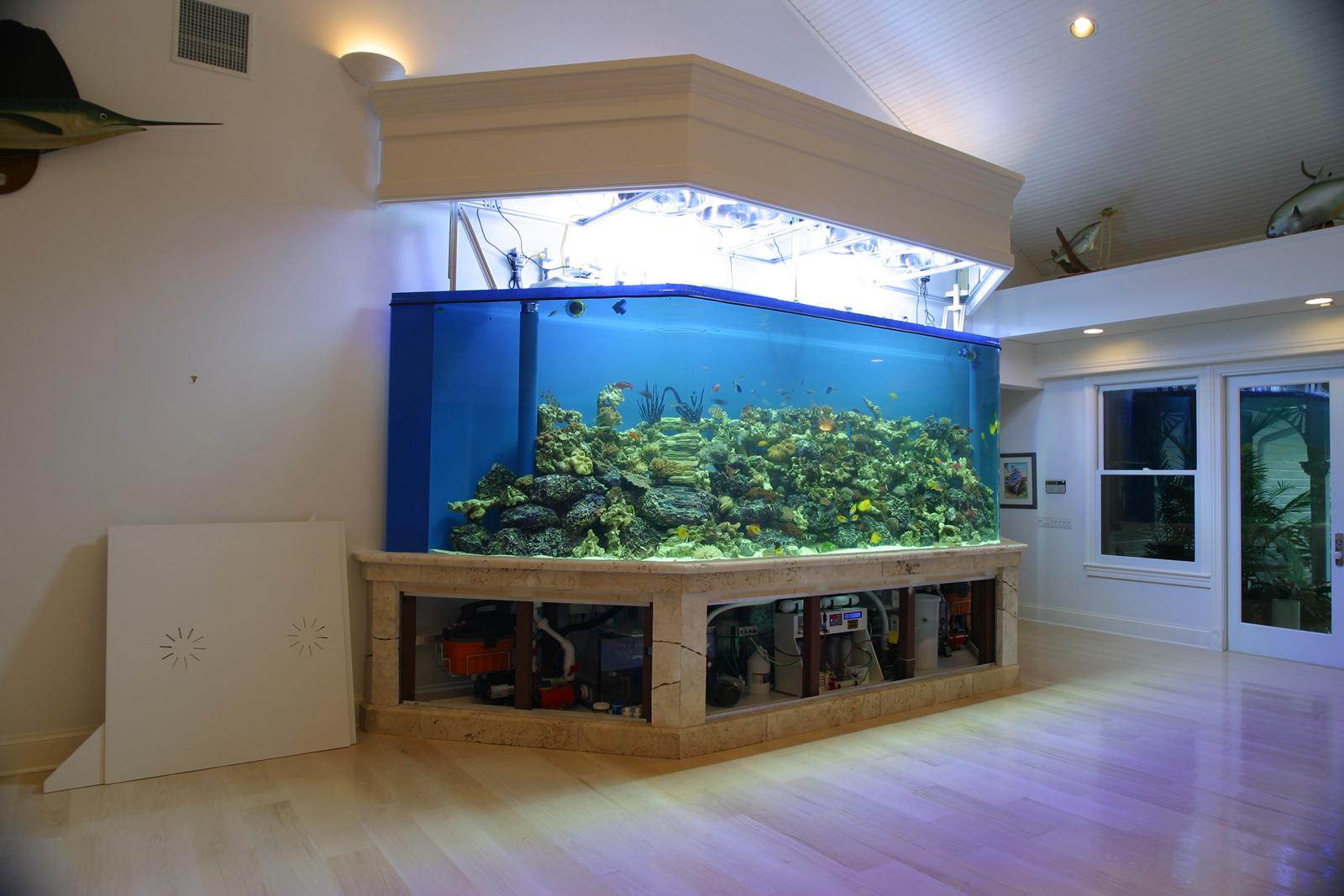 Aquarium fish tank hoods -  Pin Custom Fish Tank Hood On Pinterest
