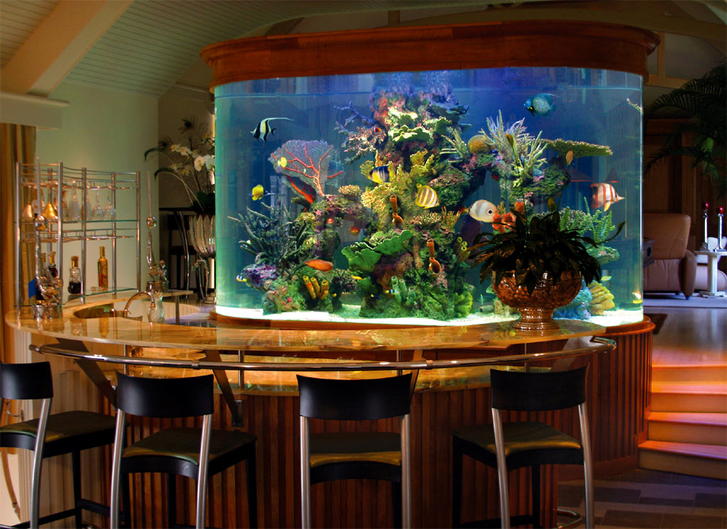 Custom aquariums for Aquarium interior designs pictures